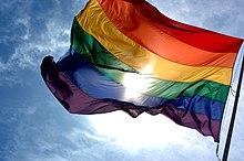 Cờ biểu tượng của cộng đồng LGBTQ+ tượng trưng sự đa dạng giới tính, sự đa dạng định giới và đa dạng xu hướng tính dục